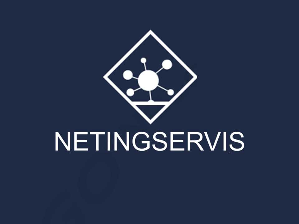 Netingservis Profile Picture
